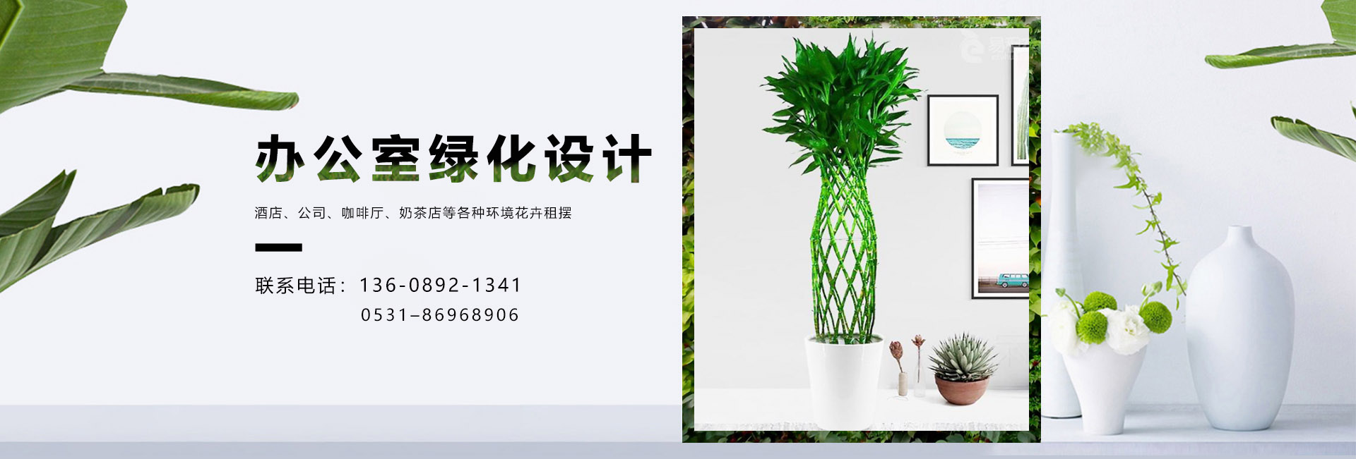 济南绿植租赁